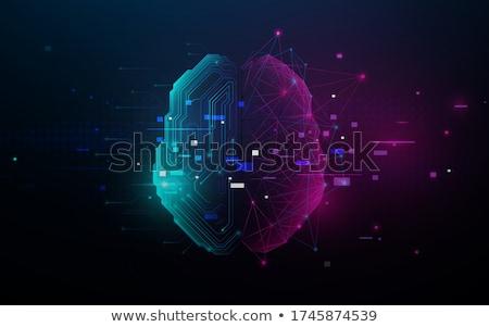 нейрон · биологический · электрические - Сток-фото © lightsource