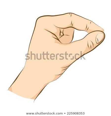Cartoon Pinch - Vector Illustration Stock photo © indiwarm