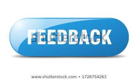Feedback Button. stock photo © tashatuvango