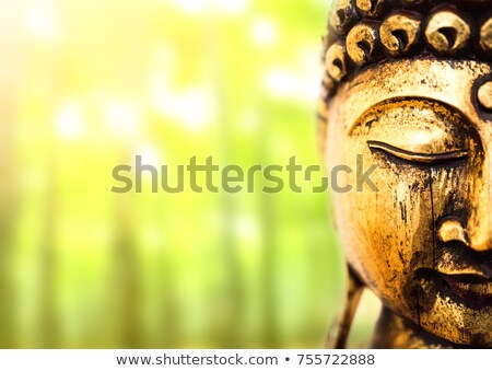 Thai religiosa statua verde piccolo erba Foto d'archivio © RuslanOmega