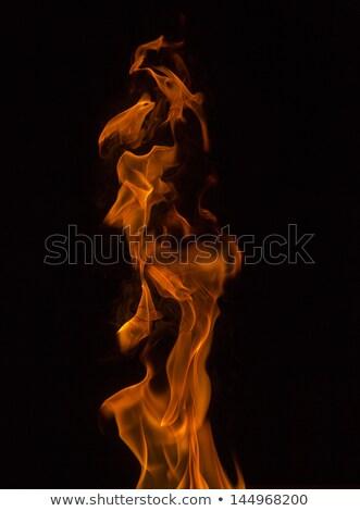 Abierto llama extrano formas Foto stock © vetdoctor
