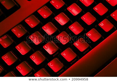 Financial Security Concept on Red Keyboard Button. Stock photo © tashatuvango