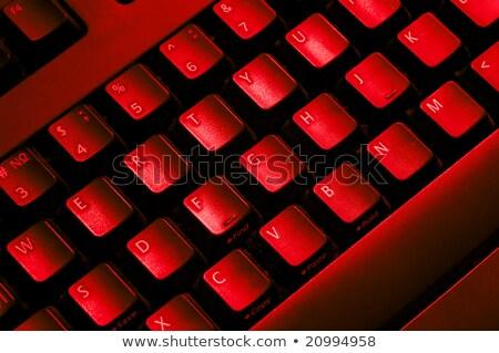financial security concept on red keyboard button stock photo © tashatuvango