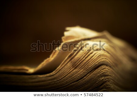 Stock photo: Edge Of Open Old Religious Book Shallow Dof