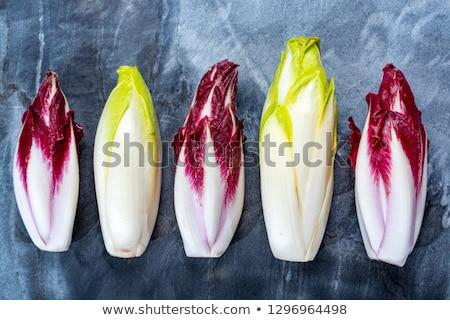 Salade kaas dining schotel dieet seizoen- Stockfoto © M-studio
