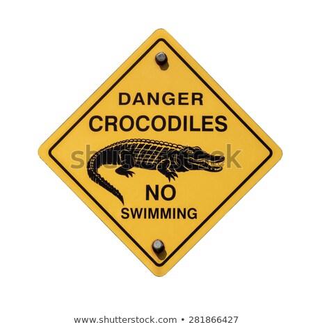 geen · teken · gevaar · vlag · zwemmen · strand - stockfoto © tang90246