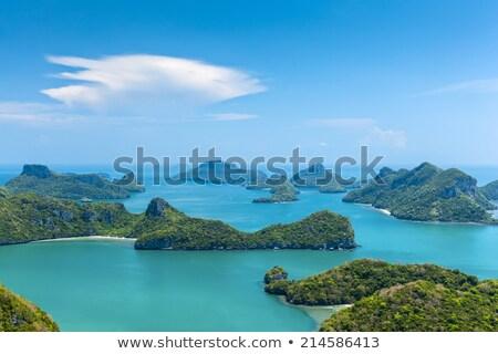 тропический · пляж · пород · пальмами · синий · морем - Сток-фото © pzaxe