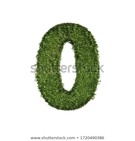 verde · rosolare · muro · di · pietra · impianti · fiore · casa - foto d'archivio © scenery1