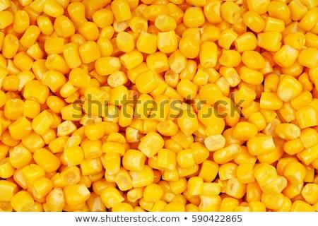 drogen · mais · voedsel · leven · eten · popcorn - stockfoto © jonnysek