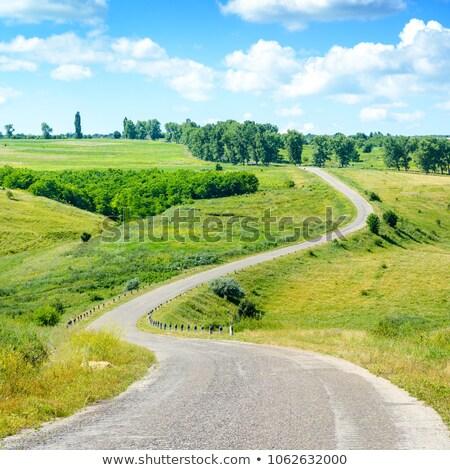 vidék · mező · napsütés · tájkép · nyár · égbolt - stock fotó © Sportactive