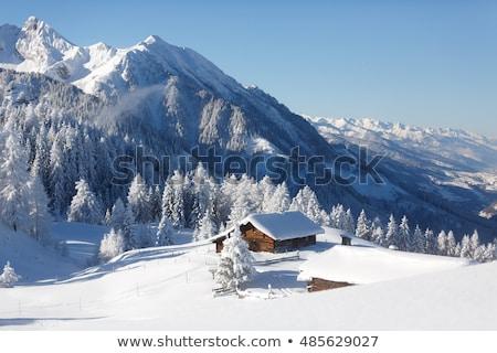 invierno · paisaje · antigua · casa · montana · pueblo - foto stock © Kotenko