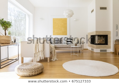 Stock photo: Cozy living room with spacious sofas
