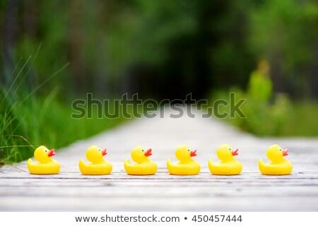 Stok fotoğraf: Yeşil · kauçuk · ördek · örnek · beyaz · turuncu
