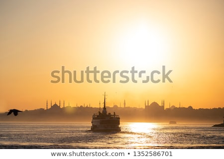 silhouette of istanbul at sunset stock photo © 5xinc