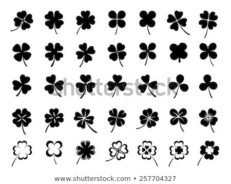 Set of clover Stock photo © blackmoon979