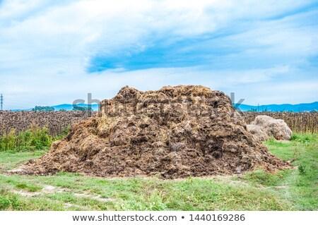 Estrume coberto velho pneus agricultura Foto stock © Digifoodstock