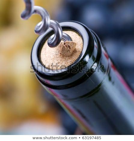 Yeşil üzüm bir cam beyaz şarap bağ Stok fotoğraf © Yatsenko