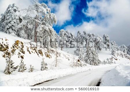 út · hegyek · fedett · hó · Svájc · égbolt - stock fotó © kirill_m