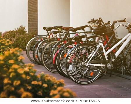 bicycle parking stock photo © luissantos84
