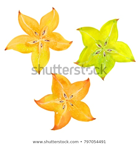 Watercolor illustration of star fruit Stock photo © Sonya_illustrations