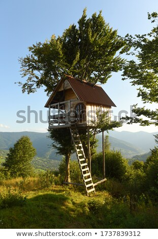 Children in treehouse Stock photo © IS2