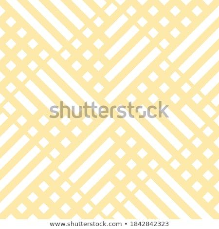 幾何学的な 民族 スタイリッシュ テクスチャ ベクトル 抽象的な ストックフォト © Samolevsky