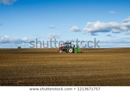 Stock photo: Winter wheat field in the fall with a tractor
