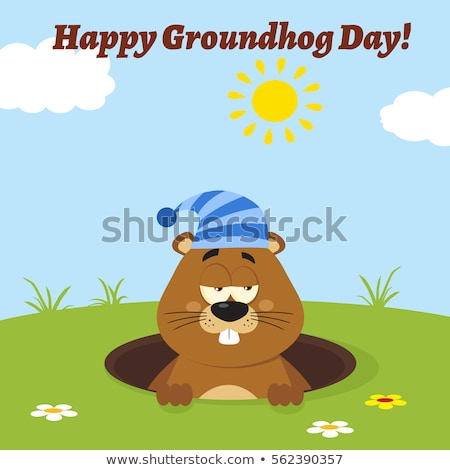Cute Marmot Cartoon Mascot Character With Sleeping Hat Emerging From A Hole In Groundhog Day Stock photo © hittoon