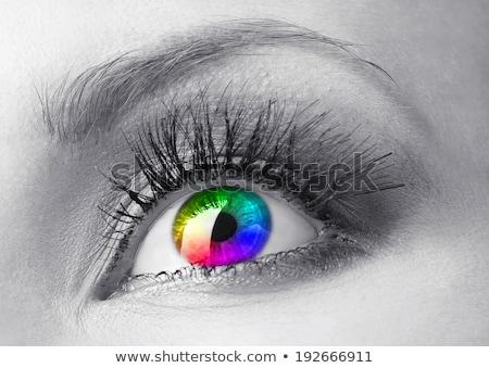 Colorfull rainbow make-up on woman eye  Stock photo © artjazz