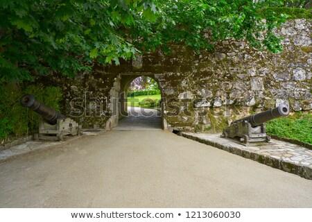 Parku Hiszpania ściany zielone zamek Zdjęcia stock © lunamarina