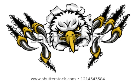 Foto stock: Eagle Mascot Face Ripping Through Background
