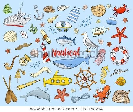 Маяк дельфин пляж набор иллюстрация рыбы Сток-фото © colematt