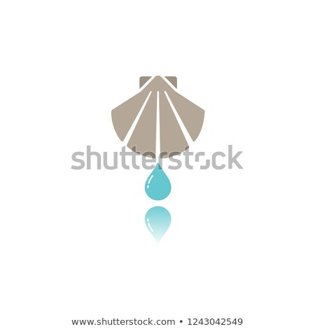 Baptism flat color icon with reflection Stock photo © Imaagio