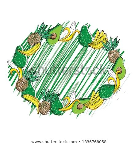 тропические плодов баннер экзотический продовольствие овальный Сток-фото © robuart