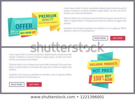 Exkluzív ajánlat vektor címkék leszállás oldal Stock fotó © robuart