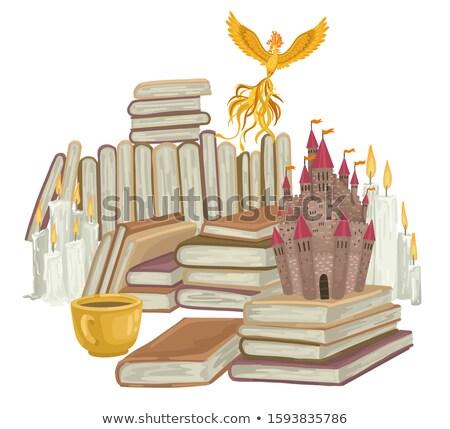 Cartoon феникс чтение иллюстрация книга огня Сток-фото © cthoman