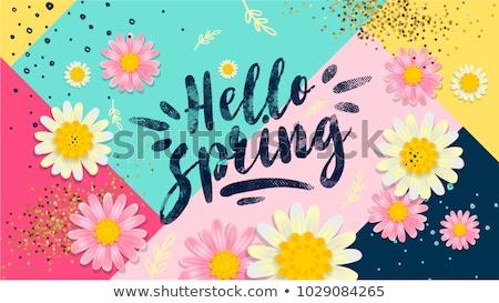 Metin merhaba bahar örnek çiçek kelebek Stok fotoğraf © colematt