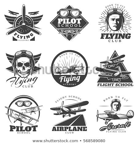 skull flying logo vector illustration stock photo © vicasso