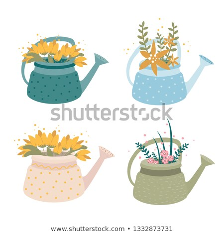 Bouquet of yellow roses in white watering can Stock photo © Melnyk