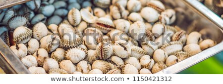 fresh tasty seafood served on crushed ice close up banner long format stock photo © galitskaya