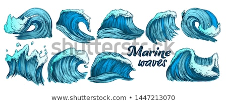 Color Breaking Atlantic Ocean Marine Wave Storm Vector Stock photo © pikepicture
