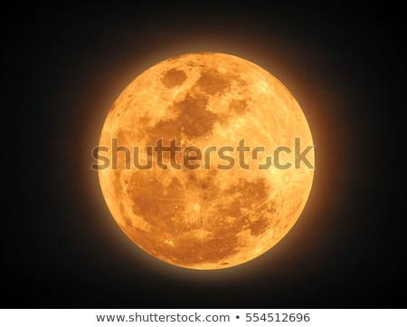желтый луна иллюстрация небе пейзаж Сток-фото © Blue_daemon