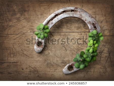 horseshoe with shamrock on wooden background Stock photo © dolgachov