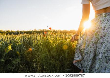 jovem · campo · flores · silvestres · flores · da · primavera - foto stock © przemekklos
