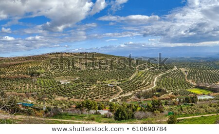 Kilátás környék Spanyolország város fal háttér Stock fotó © borisb17