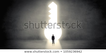 Işadamı ayakta büyük anahtar deliği tek başına adam Stok fotoğraf © ra2studio