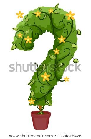 Znak zapytania winorośli puli ilustracja roślin żółte kwiaty Zdjęcia stock © lenm
