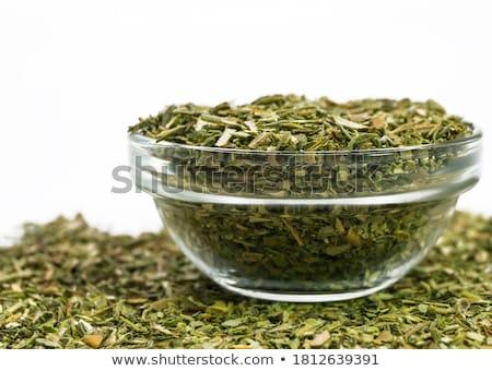 Salado verano blanco verde plantas Foto stock © joker