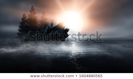 Jeleń światło księżyca ilustracja księżyc mężczyzna łące Zdjęcia stock © adrenalina