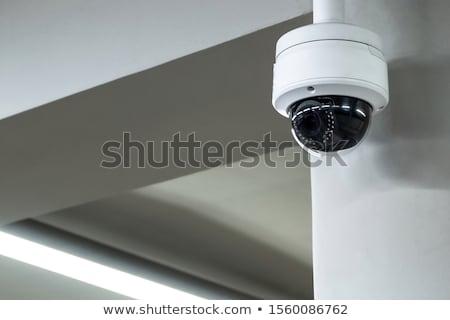 Biztonsági kamera megfigyelés videó telefon képernyő lány Stock fotó © AndreyPopov